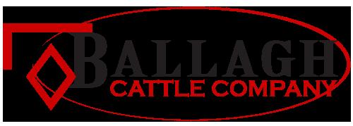 BALLAGH CATTLE COMPANY Logo